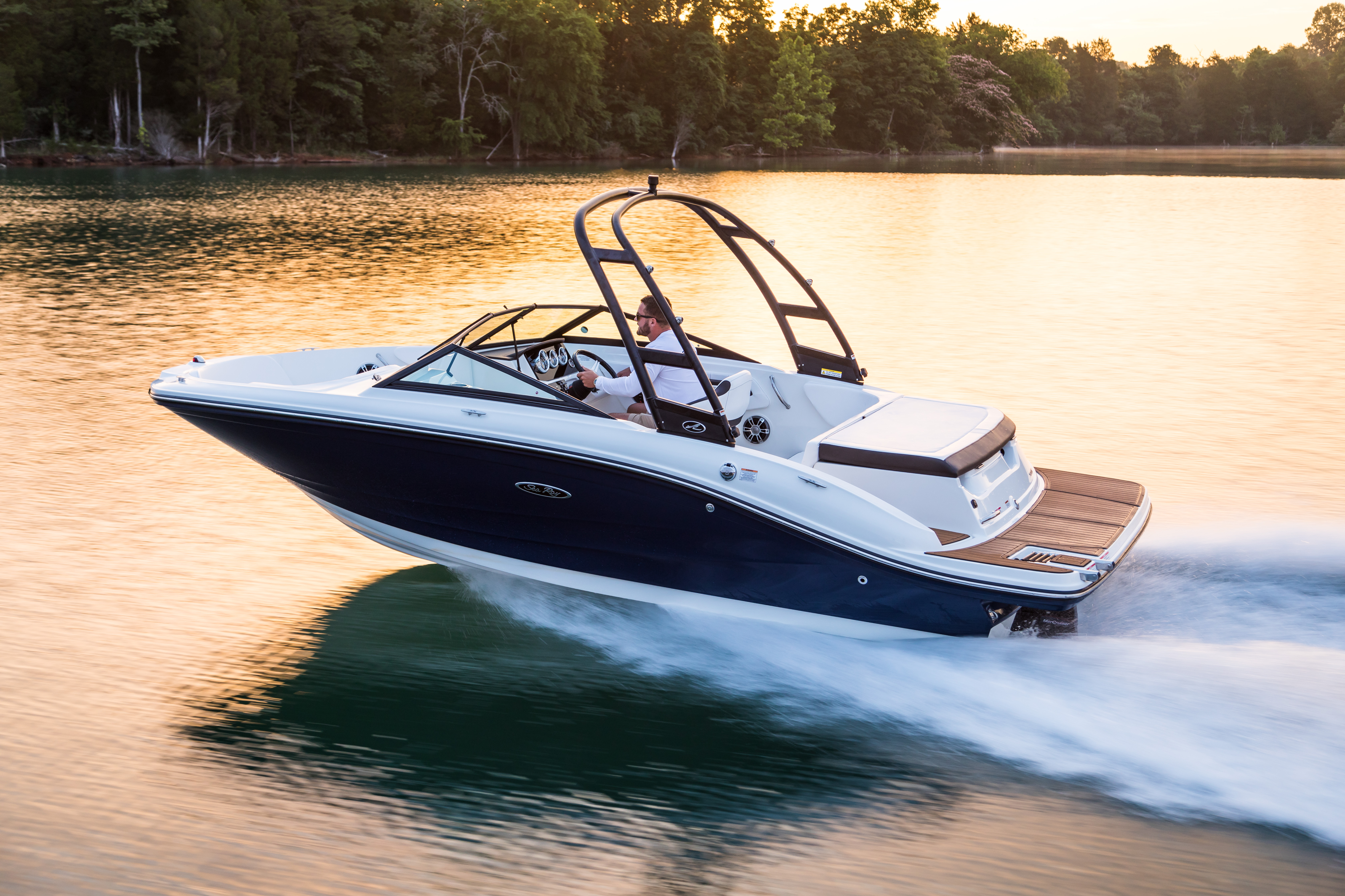 Sea Ray Boat Bowrider SPX 190 for sale at BayMarine